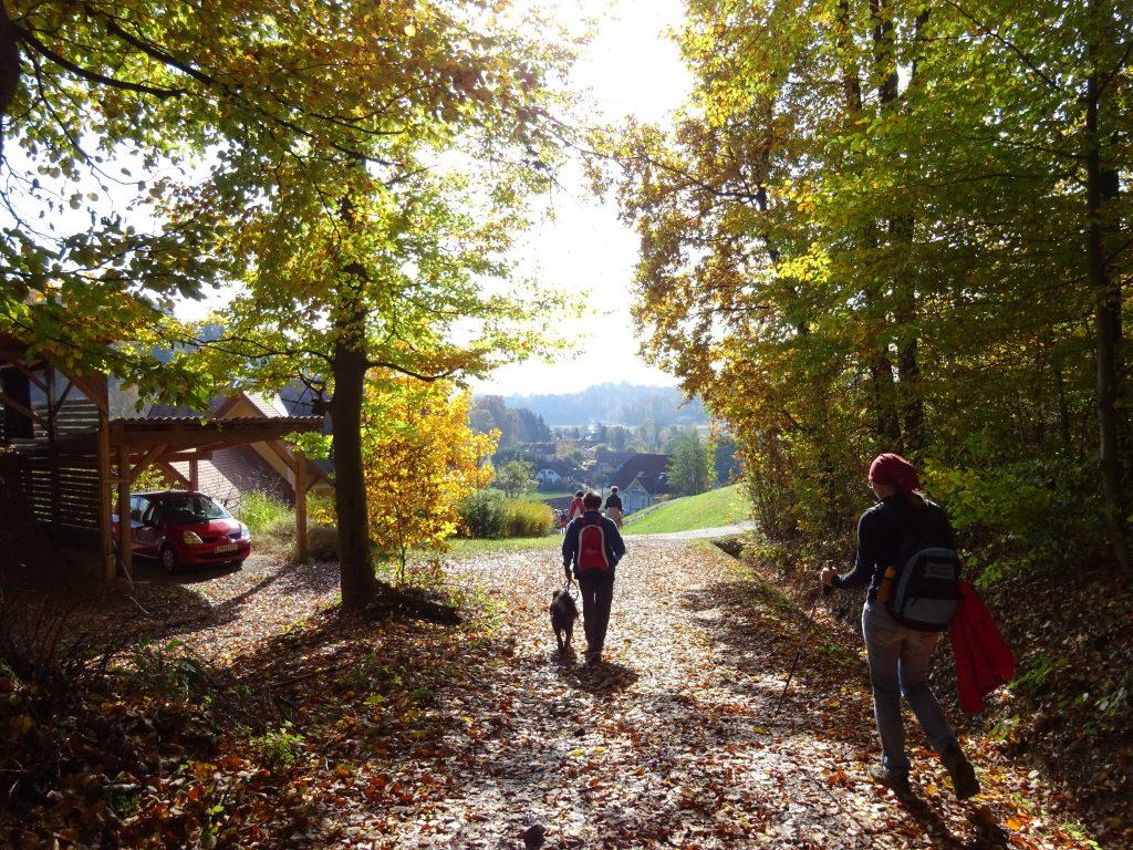 Urlaub am Bauernhof in Riegersburg, Wandern rund um die Riegersburg